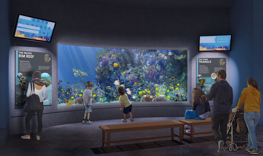 pacific-rim-tropical-oregon-coast-aquarium-capital-campaign